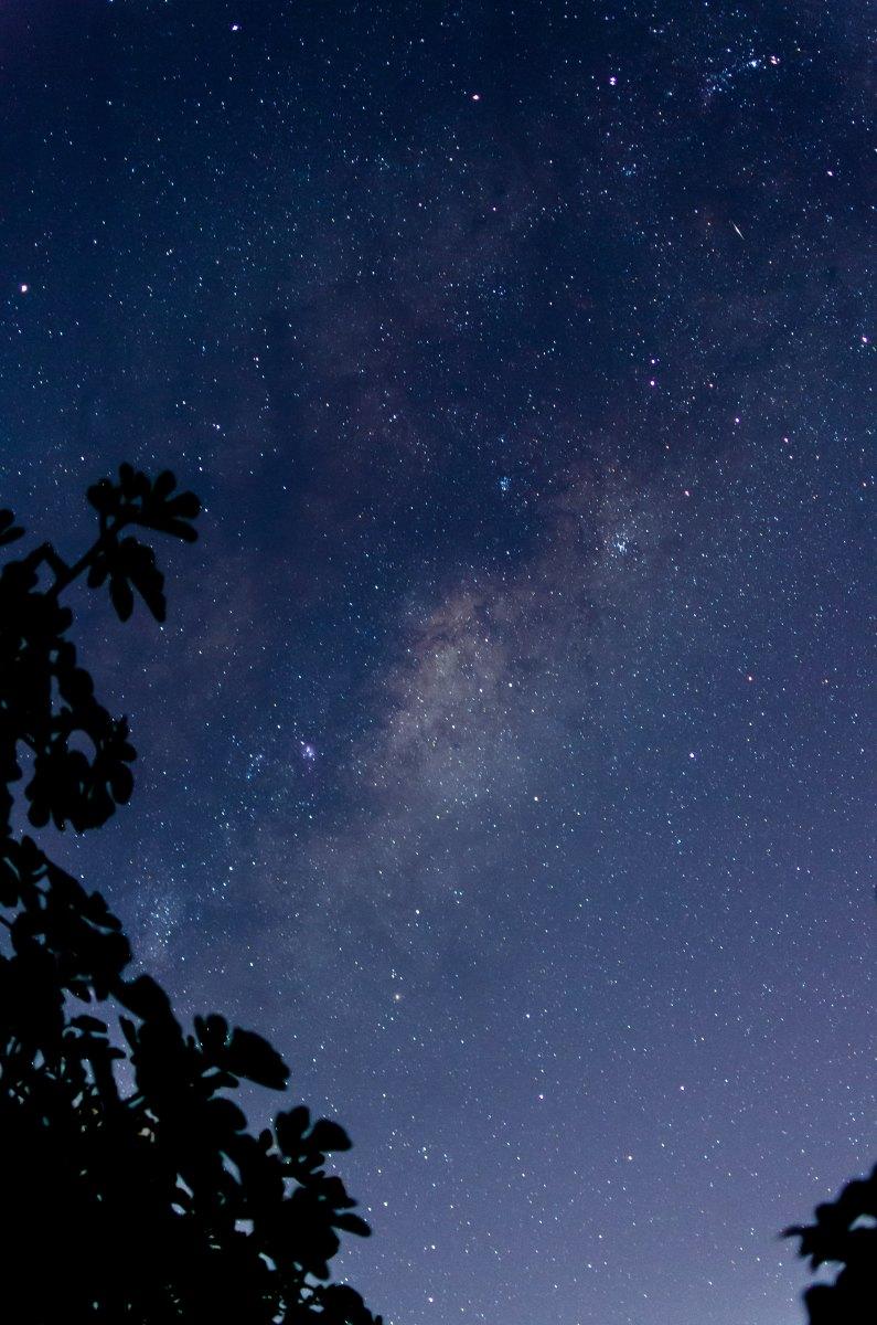 Notte stellata, Anne Sexton