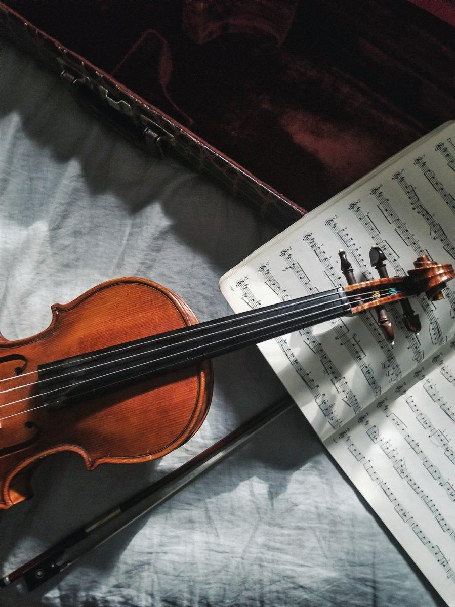 Il violinista pazzo, Fernando Pessoa